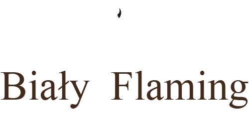 Bistro Biały Flaming